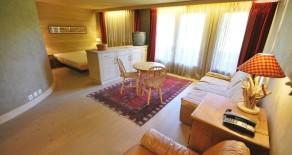 1-комнатная квартира в Сааненмозере (Saanenmöser)