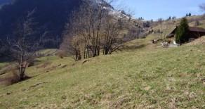 Продажа земли в Швейцарии